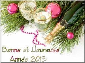 Bonne année 2013. dans Bonne année, joyeux Noël. 3806759c-300x223